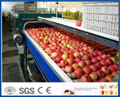 Fruit Juice Processing Machines , Apple Processing Machine For Juice Making
