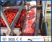 Fruit Processing Tomato Juicer Machine , Electric Tomato Juicer Process Plant And Machinery