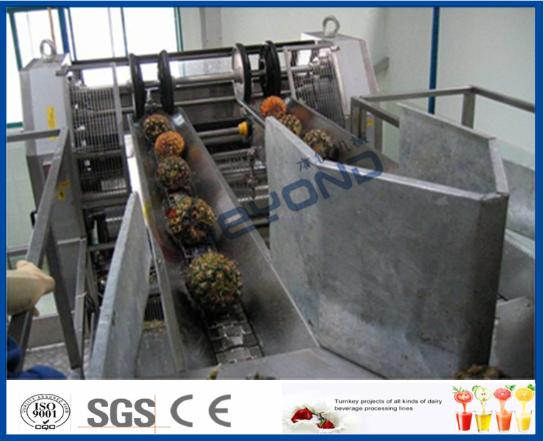 High Efficient Pineapple Processing Line With Pineapple Cutting Machine