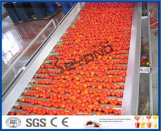 Томат засаживая вполне технологической линии томата машины/Семи автоматический 2 до 50 Т/Х